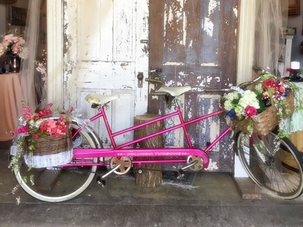 Bicycle for 2 by Old Oaks Vintage Rentals